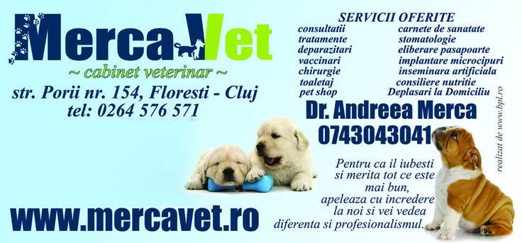 Consultatii veterinare Pisica dumneavoastra are probleme medicale si trebuie sa mergeti cu ea la un cabinet veterinar? Ati gasit pe strada un caine lovit de masina si vreti sa ajungeti cu el cat mai repede la un cabinet veterinar cat mai bun? Aveti nevoie de consultatii veterinare pentru animalul dumneavoastra de...  http://articolebiz.ro/consultatii-veterinare/