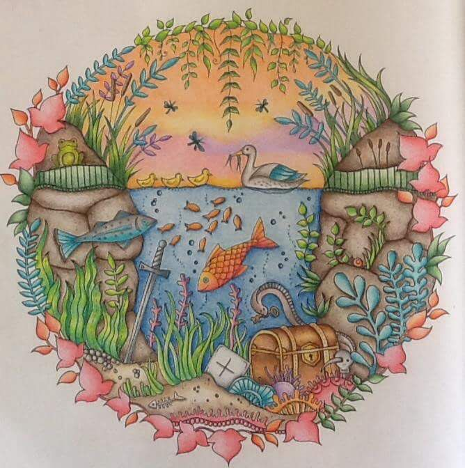 Aquarium Enchanted Forest Aquario Floresta Encantada Johanna Basford Coloring BooksAdult