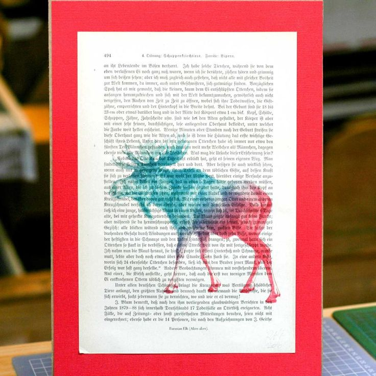 Moose print on antique page