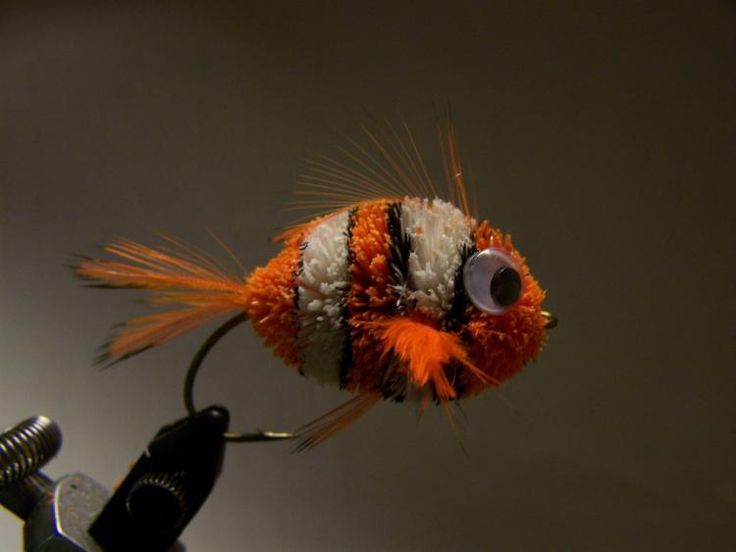 FlyTyingForum.com - Nemo