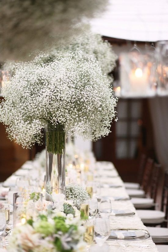 baby's breath in tall cylinder