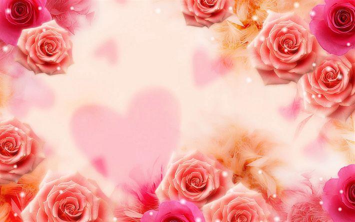 Hämta bilder blommig bakgrund, rosor, vackra blommor, rosa rosor, röda rosor