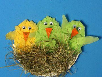 Vogelnest aus Pappteller