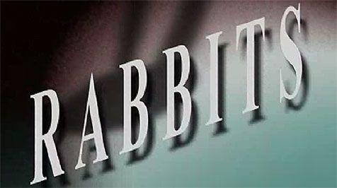 Making Sense of David Lynch: A Rabbits Tale | The Artifice