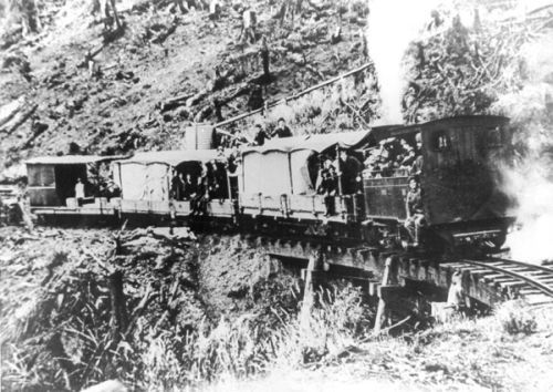 The railway to the Magnet mine, about 1900.