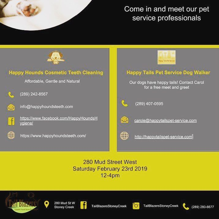 Pet Care Day Is Set Does Your Puppy Have Bad Doggy Breath Or Plaque Build Up But You Dont Want To Pay Expensive Vet Cost Pet Care Dog Teeth Cleaning Pet