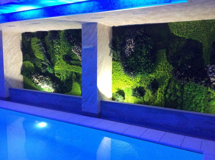 pareti di Moss e piante stabilizzate by FLOEMA