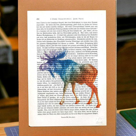 Unique Print: Antique Encyclopedia Page with Moose.