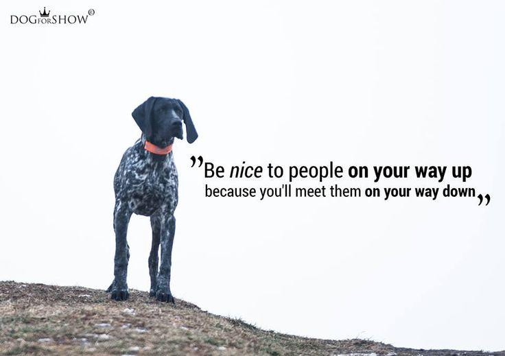 http://dogforshow.com/