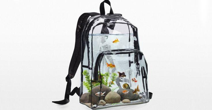 Un sac à dos transparent pour transporter votre poisson n'importe où ! #Inspiration