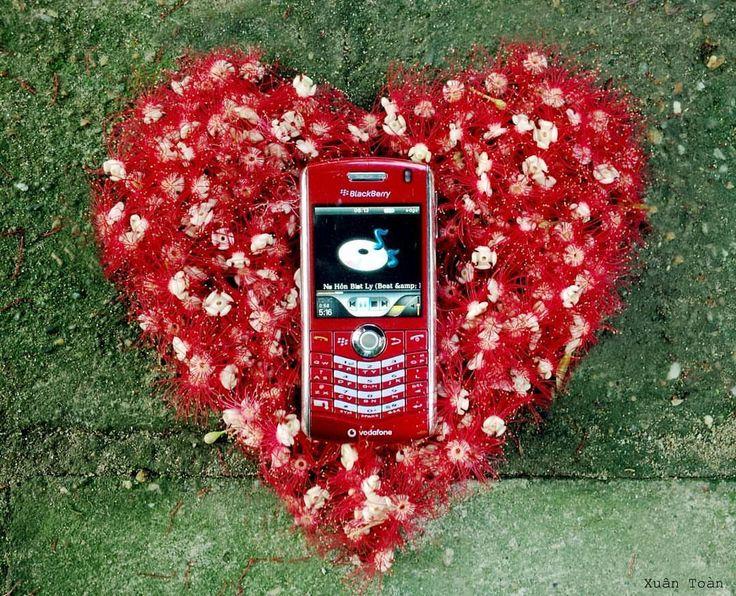 #inst10 #ReGram @nguyen.xuan.toan: Kỳ cạch ngồi nhặt nhặt xếp xếp :3 #blackberry #blackberryphotos #pearl #8110 #vodafone #red #love #BlackBerryClubs #BBer #BlackBerryPhotos #OldBlackBerry #BBOS #Classic