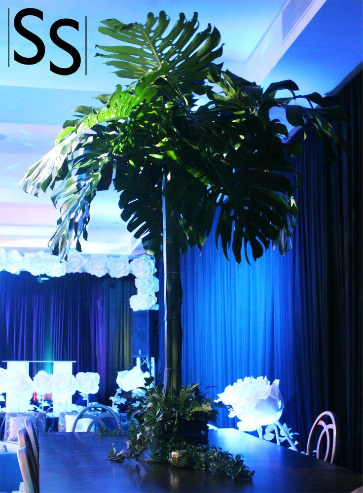 Evento Rain Forest/Rain Forest Event