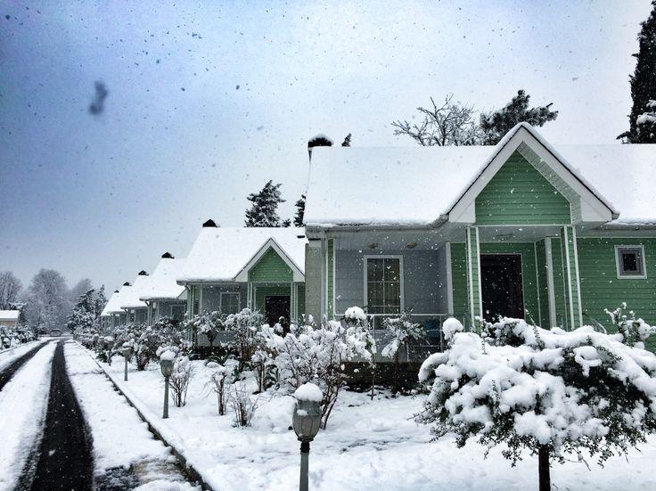 Winter in Lankaran ❄️ Azerbaijan, Lankaran , Lenkeran , Bakü , snow , winter , letitsnow , winter wonderland
