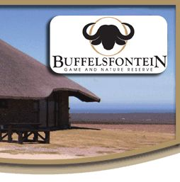 Buffelsfontein Game and Nature Reserve - Accommodation