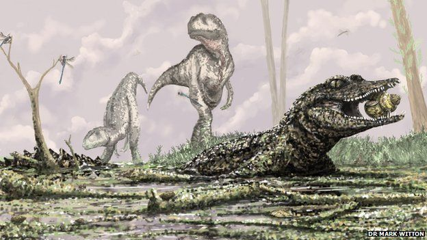 Skull fragments reveal new ancient crocodile species