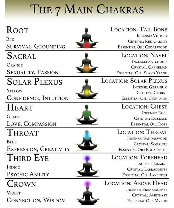 The 7 Chakras are the energy centres in our body in which