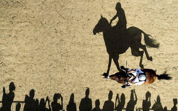 olympic-horse-shad_2294117k