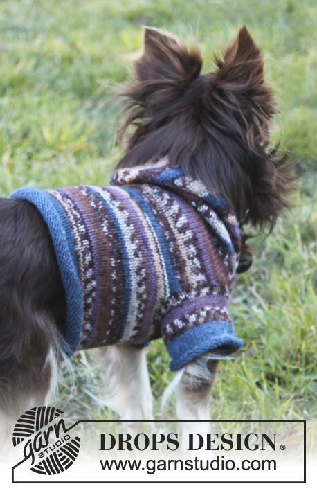"Little Watcher / DROPS Extra 0-833 - Knitted DROPS dog's sweater with hood in ""Fabel"".  - Free pattern by DROPS Design"
