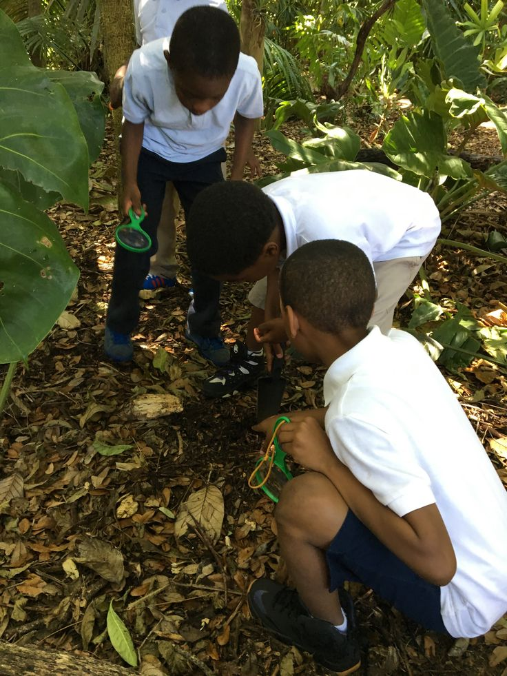 Hands on Exploring what they learned at Fairchild Tropical Garden #EAOSchoolPlay