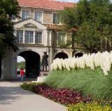 Texas Tech University - finna dat / Flickr