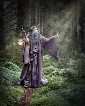 the wisdom of merlin and his dreams for king arthur Symbolism in the legend of king arthur lesson connection: king arthur: man or legend  ' and sad was arthur's face taking it, but old merlin counselled him.