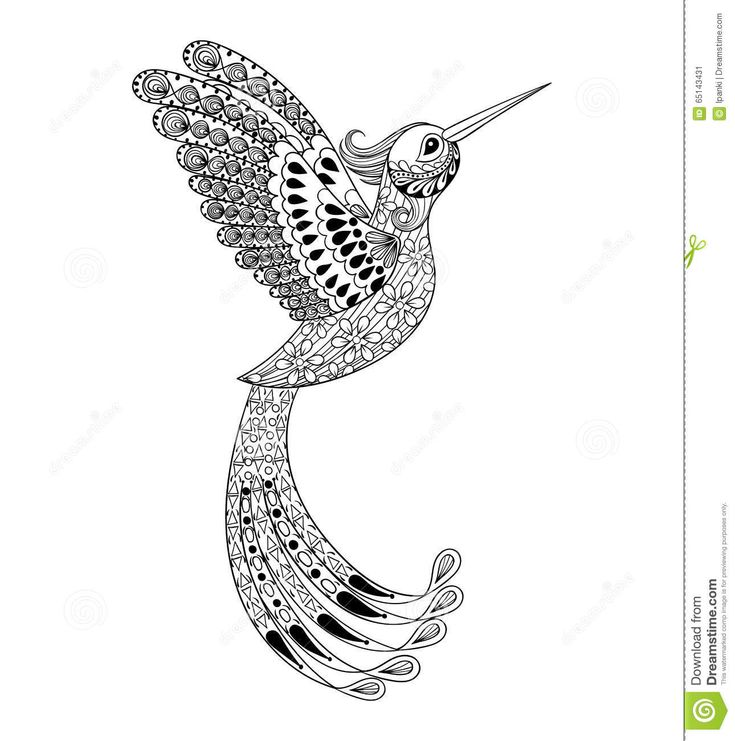 zentangle hand drawn artistically hummingbird flying bird tribal totem for adult coloring page or tattoo t shirt and postcard with high details