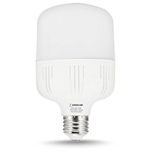 Best 25 outdoor security lights ideas on pinterest garden lohas led bulb 30w commercial retrofit light bulbs 250 300 watt equivalent t80 mozeypictures Gallery