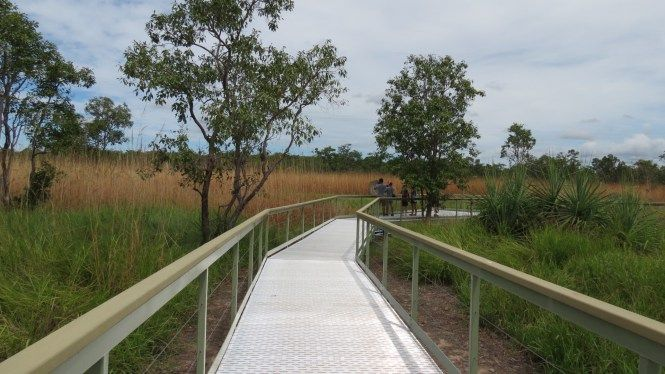 Litchfield Termite Board walk