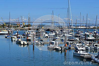 (C) Celia Ascenso - Recreation Boats On Mondego River Marina .