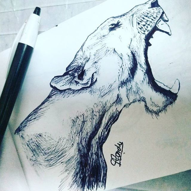Pensketch Sketchbook Pen Sketches Pen Roar