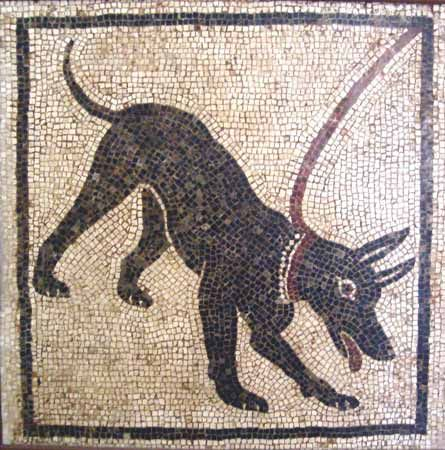 Pompeii mosaics - This was at the doorstep to let people know that you had a guard dog