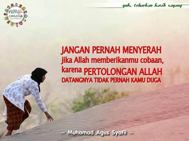 Jangan pernah meyerah jika Allah memberikanmu cobaan, karena pertolongan Allah datangnya tidak pernah kamu duga.