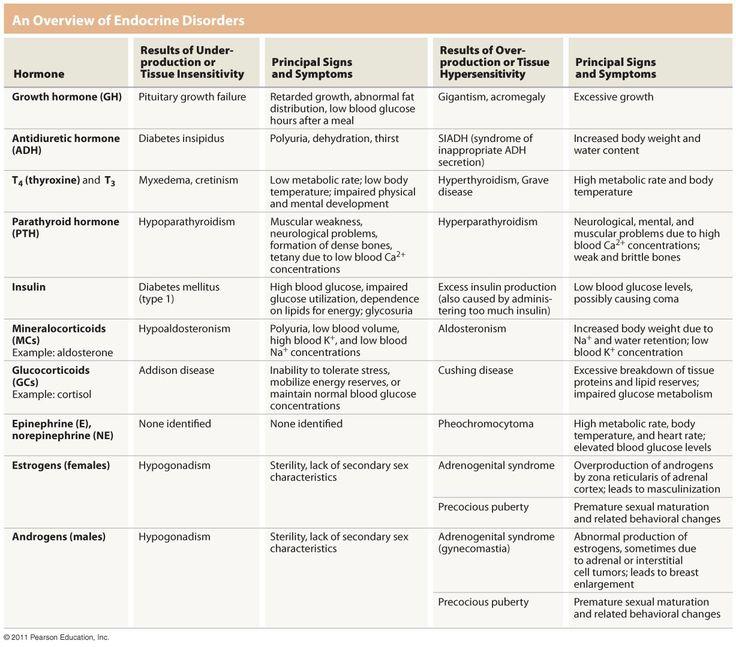 Nervous system diseases worksheet