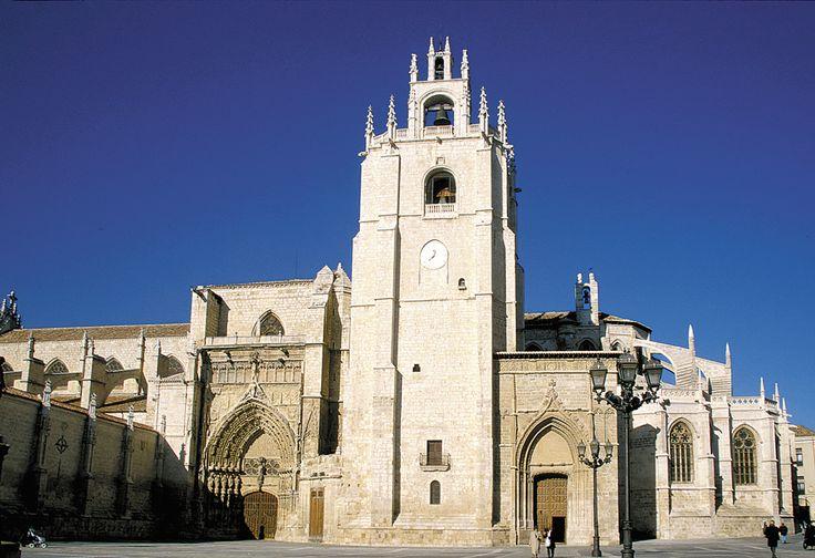 A la Catedral de Palencia se la denomina La Bella Desconocida y es dueña de una arquitectura ampulosa. Este edificio, caracterizado por compaginar varios estilos, entre los que destacan elementos renacentistas y góticos, está enriquecida con importantes obras de pintura y escultura. Una peculiaridad de este bello ejemplo de la arquitectura gótica es que, bajo el subsuelo, una cripta recoge los restos de San Antolín bajo dos construcciones, una de la época visigoda y otra del románico.