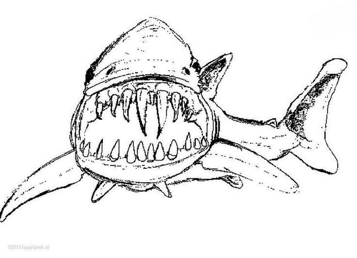 Beste Große Weiße Hai Malvorlagen Zum Ausdrucken Fotos - Beispiel ...