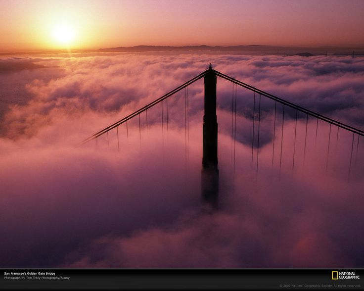 Golden Gate Bridge in Clouds  Photograph by Tom Tracy Photography/Alamy    San Francisco's Golden Gate Bridge appears to float on a sea of surrounding clouds. Such low-level clouds, called stratus clouds, occur below 6,500 feet (2,000 meters) and often bring rain or snow. Clouds that touch the ground are known as fog.