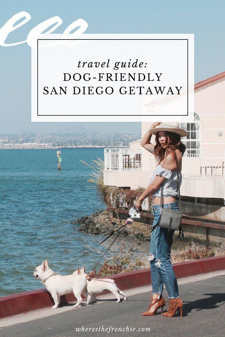 San Diego Getaway Dog Friendly Hotels Pet Friendly Hotels Moving To San Diego