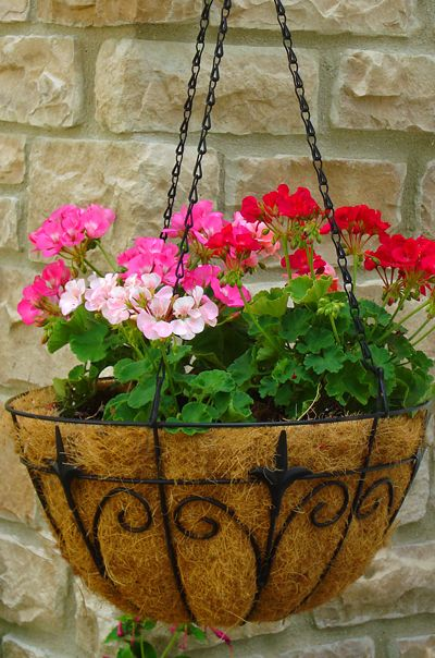 25 best ideas about decorative hanging baskets on for Colorful hanging planters