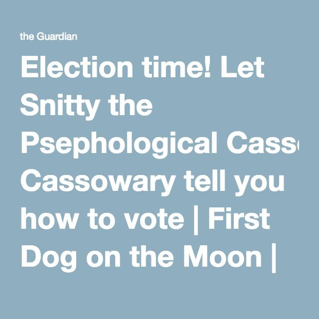 Election time! Let Snitty the Psephological Cassowary tell you how to vote | First Dog on the Moon | Opinion | The Guardian