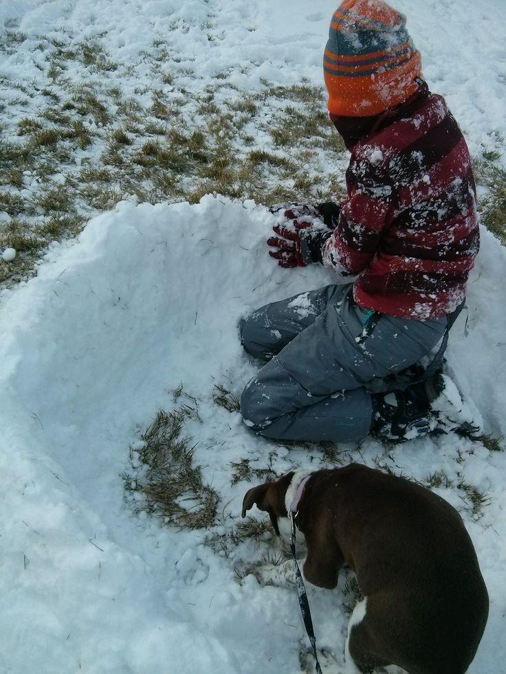 Snow day pics!