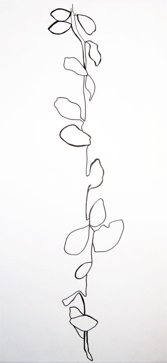 Contour Line Drawing Of A Plant : Continuous line art pinterest plant drawing