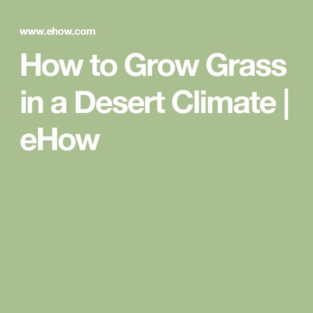 How to Grow Grass in a Desert Climate   eHow