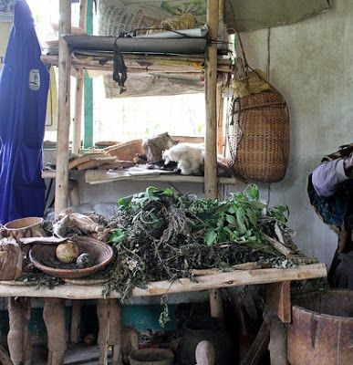 Herbalist Allegedly Duped Three Friends Of N3.61m On Pretext Of Performing Money Rituals