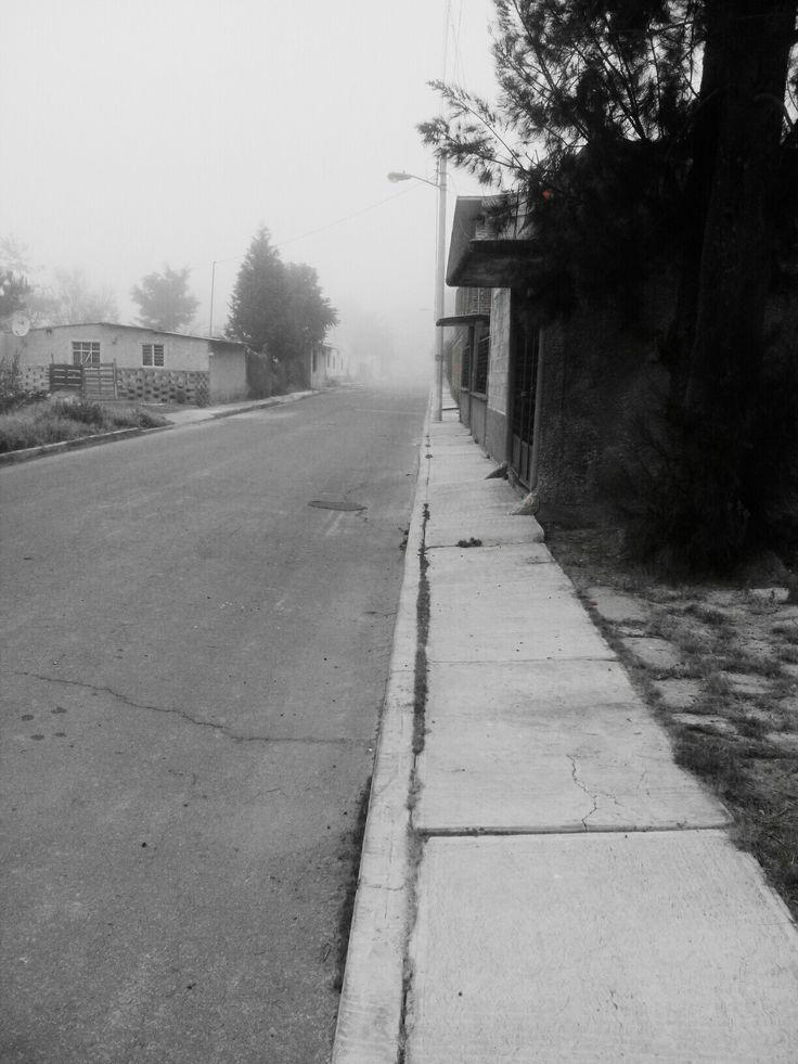 """""""El silencio resultaba opresivo. Las tinieblas cada vez más pronunciadas, la niebla enroscándose en pequeñas masas coaguladas.""""  Libro: La larga marcha Autor: Stephen King Alumno: Brian Flores Perez"""