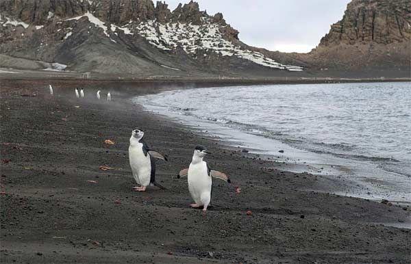 Deception #Island #Antarctica