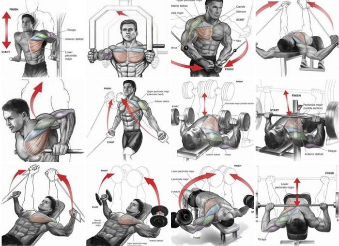 The upper chest area can be one of the most stubborn to grow and has been the source of frustration for many advanced bodybuilders and novices alike.  Luckily, every problem has its solution, and it's up to you to learn from their mistakes and successes! So how can you target your upper pecs with perfect …