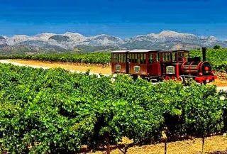Mallorca Wine Express: El tren que presenta a #Mallorca en un tour ligado al #vino