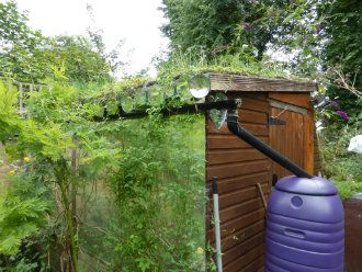 Potting shed with mirrored wall
