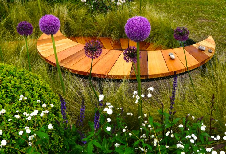 Designed by Carolyn Grohmann. Small crescent moon cedar bench with purple Alliums.