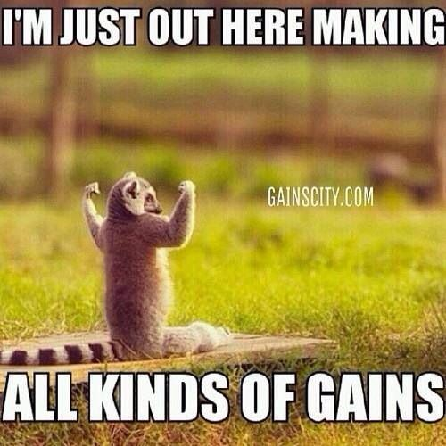 Gym humor you are reading this i julius voice from Madagascar